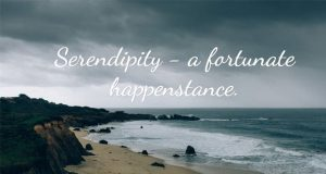 serendipity-18